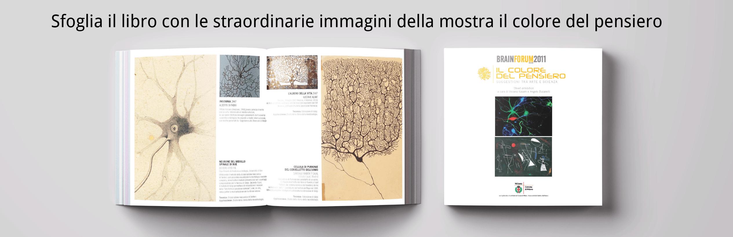 Sfoglia il libro con le straordinarie immagini della mostra il colore del pensiero