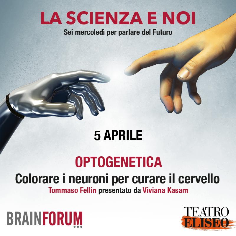 Optogenetica – Colorare i neuroni per curare il cervello (e forse leggere nel pensiero)